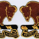 10th Cavalry Regiment Buffalo Soldier Insignia US Army Badge Iron On Embroidered Patch