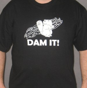 Dam It!