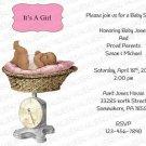 Personalized Baby Shower Invitation (babygirl2248)