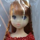 Petworks Fresh Ruruko 16HB Doll Factory Sealed