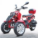 50cc Three-Wheel Ruckus Style Trike Scooter Moped Price 400usd
