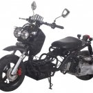 Custom Ruckus Clone 150cc Version 1.0 Price 450usd