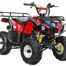 Raider 125cc Kids ATV Quad  with Reverse Price 300usd