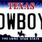 "Nfl Cowboys Vanity License Plate Tag Dallas  6""x 12""  Metal Auto Aikman Elliot"