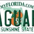Jacksonville Jaguars Florida State Background Metal License Plate Tag Nfl 12x6