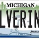 "Ncaa Wolverines Vanity License Plate Tag 6""x12"" Michigan College Metal Auto"
