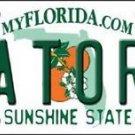 "Florida Gators Team Vanity License Plate Tag 6""x12"" College Ncaa Metal Auto Car"