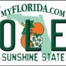 "Ncaa Florida State Vanity License Plate Tag 6""x12"" Fsu Noles College Metal Auto"