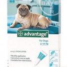 ADVANTAGE AQUA 4 PACK MEDIUM DOGS 11-20 LBS