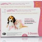 REVOLUTION FOR PUPPIES & KITTENS -PINK 6 PACK