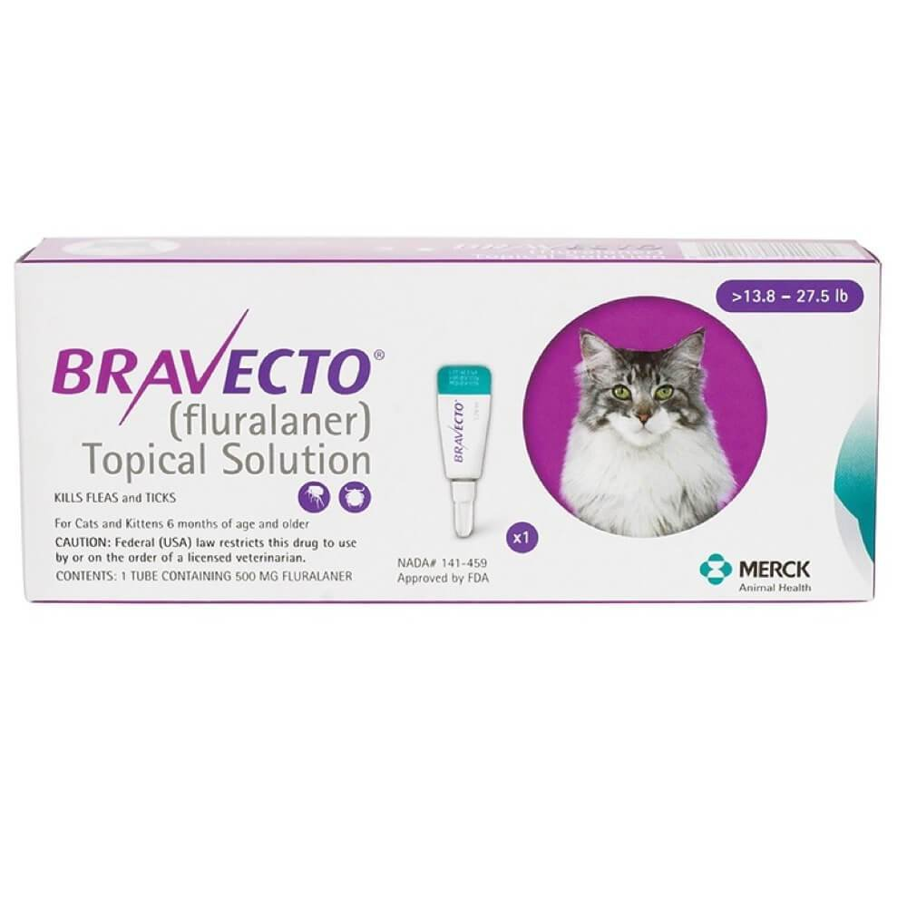Bravecto Topical Solution For Cat Large 13 8 27 5 Lbs 6
