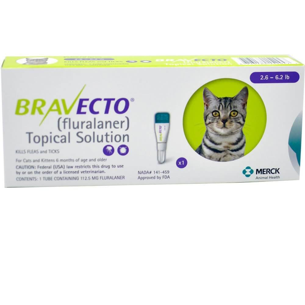Bravecto For Cats Small 2 6 6 2 Lbs 1 2kg 2 8kg 1 Dose