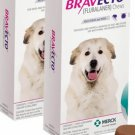 Bravecto for Dogs 2 Chewable Tablets Extra Large Dog 88-123lb (Pink, 40-56kg)