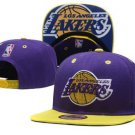 Lakers Hat.  purple and yellow