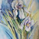 Original watercolor painting, flowers - Iris, floral wall art, decor, blooms, botanical art,