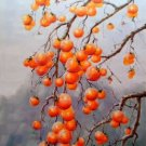 "Hand painted oil painting on canvas""persimmon""60x90CM(23.6""x35.4"")Unframed-04"