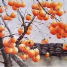 """Hand painted oil painting on canvas""""persimmon""""60x120CM(23.6""""x47.2"""")Unframed-16"""