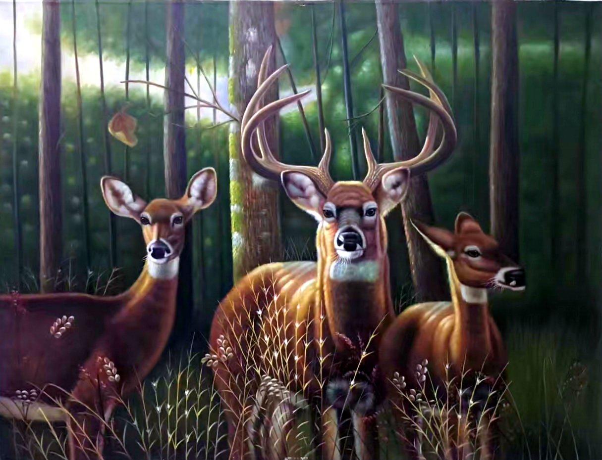 "Simple modern Hand painted oil painting on canvas""Milu Deer""60x120CM(23.6""x47.2"")Unframed-05"