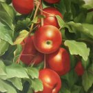 "Hand painted oil painting on canvas""bumper harvest fruits""60x90CM(23.6""x35.4"")Unframed-54"