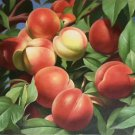 """Hand painted oil painting on canvas""""bumper harvest fruits""""60x90CM(23.6""""x35.4"""")Unframed-58"""