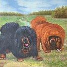 "Simple modern Hand-painted oil painting on canvas""Tibetan mastiff""60x90CM(23.6""x35.4"")Unframe-04"