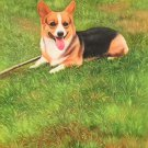 """Simple modern Hand-painted oil painting on canvas""""Cute dog""""60x90CM(23.6""""x35.4"""")Unframe-11"""