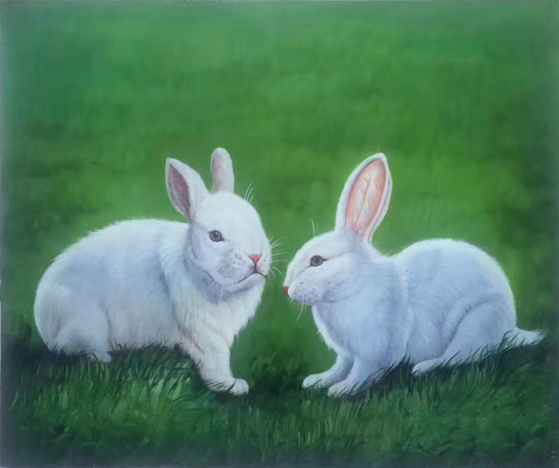 """Simple modern Hand-painted oil painting on canvas""""Cute rabbit""""50x60CM(19.7""""x23.6"""")Unframed-05"""