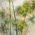 "Simple modern Hand painted oil painting on canvas""bamboo""75x150CM(30""x60"")Unframed-50"