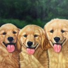 """Simple modern Hand-painted oil painting on canvas""""Cute dog""""60x90CM(23.6""""x35.4"""")Unframe-12"""