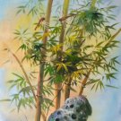 """Hand painted oil painting on canvas""""Bamboo""""50x60CM(19.7""""x23.6"""")Unframed-107"""