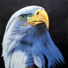 """Hand painted oil painting on canvas""""Eagle""""60x90CM(23.6""""x35.4"""")Unframed-04"""