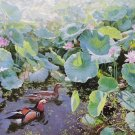 "Hand painted oil painting on canvas""lotus""116x67CM(47""x26"")Unframed-92"