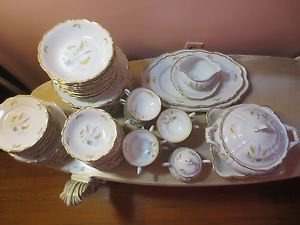 Edelstein Bavaria DORCHESTER Dinner Set 88 Piece Lot Of  Germany 16683.