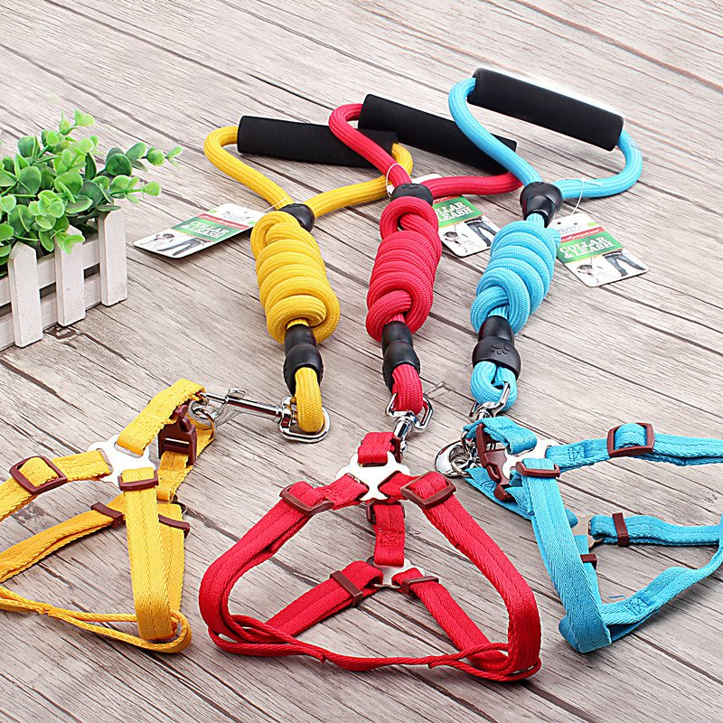 Dog Leading Set Harness and Leash Collar in 6 Colors