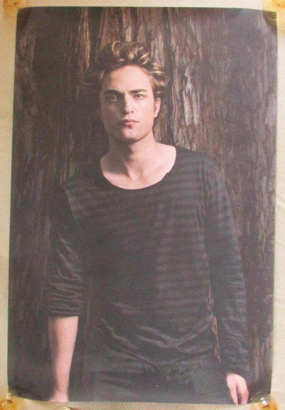 Robert Pattinson Striped Shirt Portrait Vinyl Poster 23.5 X 35.5 Twilight Saga