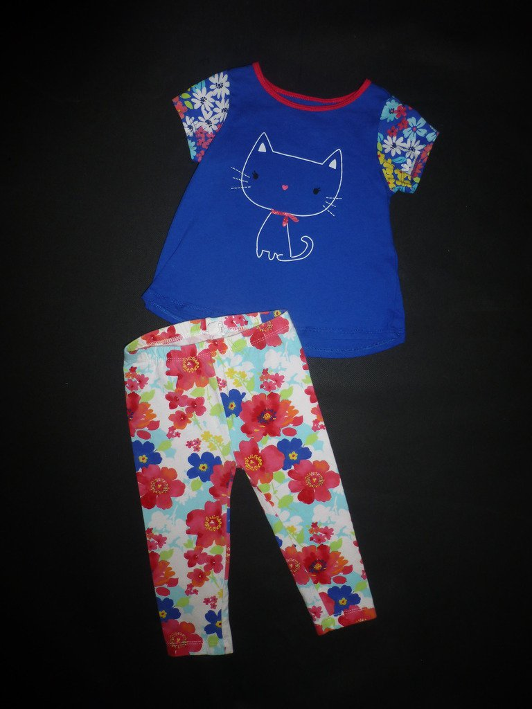First Impressions Baby Girl Blue Cat Tunic Shirt Floral Leggings Outfit 18 M