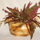 Exotic Wild Turkey Floral Arrangement