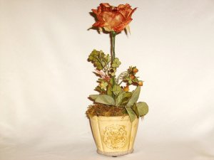 Copper color Open Rose with buds