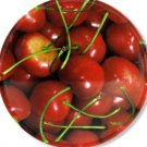 Round Trivet with Cherry Design