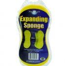 Expanding Sponge
