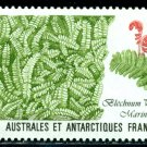 Stamp TAAF/French Antarctic 1989 Plant, Alpine water fern waterweed cabbage BOOK