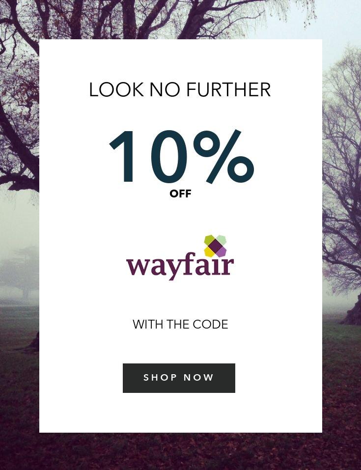 ONE (1x) wayfair 10% off coupon OnIine