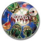 AUTOPSY band button! (25mm, badges, pins, heavy metal, death metal)