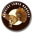 Barclay James Harvest band button (prog rock, badges, pins, 31mm)