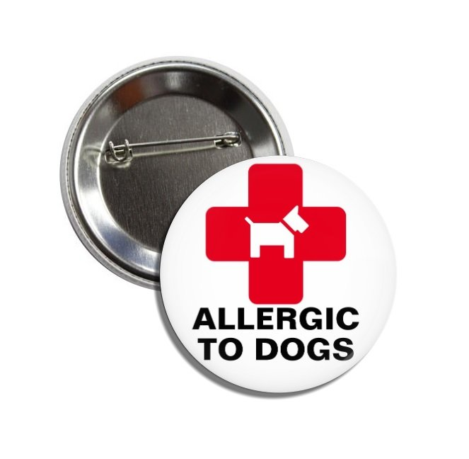 Allergic To Dogs button (25mm, badges, pins, medical alert, pet allergies)