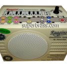 RAAGINI /  RAGINI INDIAN DIGITAL ELECTRONIC TANPURA TAMBURA NICE PLASTIC RUBBISH