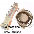 GUT STRING SET, INDIAN SARANGI. PRO-GRADE GUT STEEL & BRONZE ENSEMBLE
