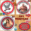 WWE Wrestling Birthday Stickers Round 1 Sheet Personalized