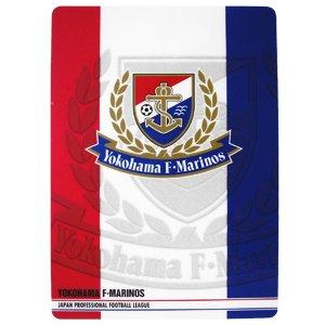 Emblem Desk Pad