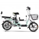 Family electric bicycle Tailg